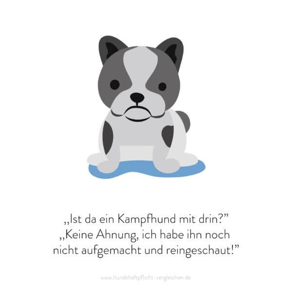 Hundehaftpflicht-Vergleichen-FunFact-6
