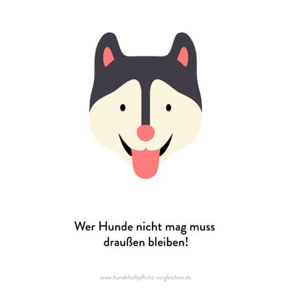 Hundehaftpflicht-Vergleichen-FunFact-7