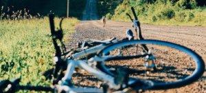 Haftpflicht Versicherung - Hund läuft vor Rad: Unfall