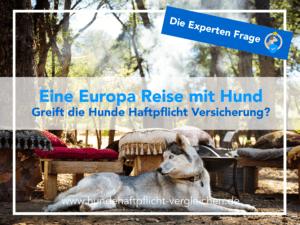 Europa Reise Hunde Haftpflicht
