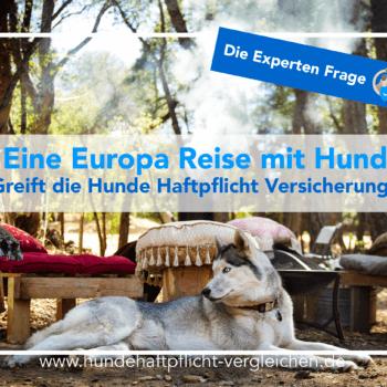 Europa Reise Hund versichern